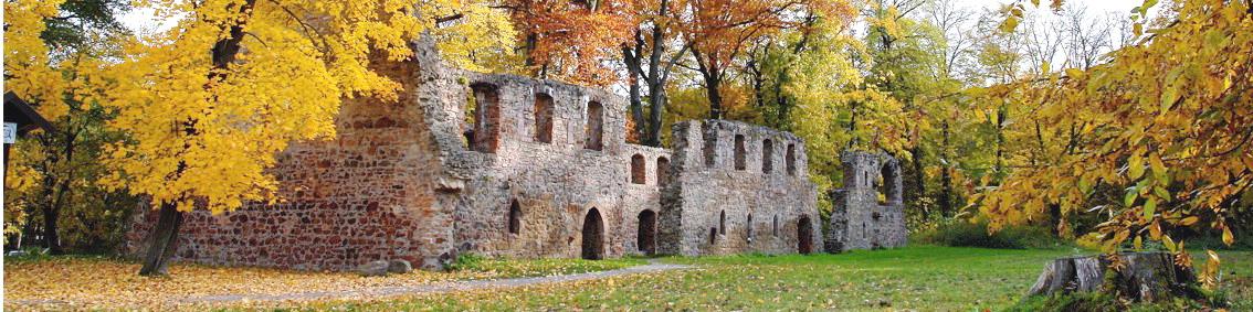 Kloster Nimbschen - zweimuldenland